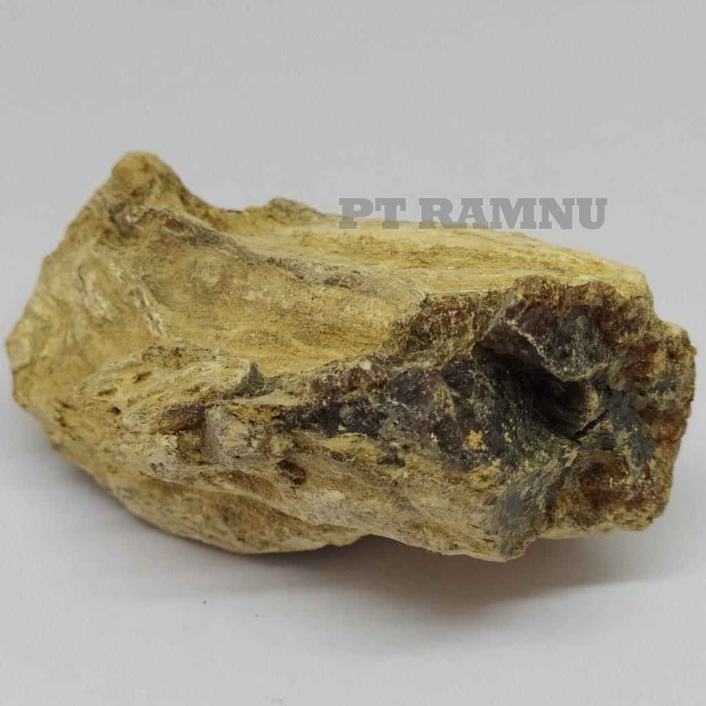 Damar Batu Kalkuta